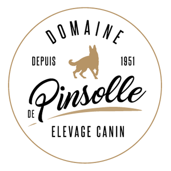 Le Domaine de Pinsolle - Elevage Canin
